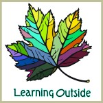 learning outside for web